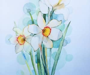 art, narcissus, and watercolor image