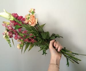 article, falling, and flowers image