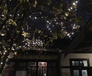 night, aesthetic, and lights image
