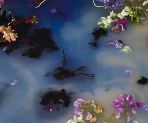 flowers, water, and art image