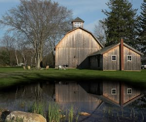 barn, pond, and country living image