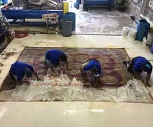 persian rug cleaning, rug padding, and wool rug cleaning image