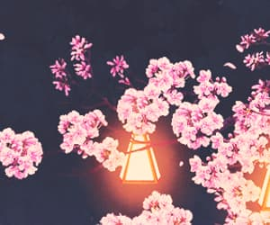 gif, anime, and flowers image