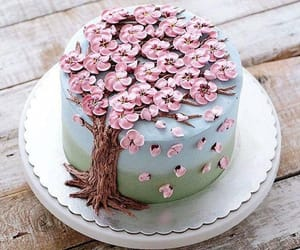 cake, food, and dessert image