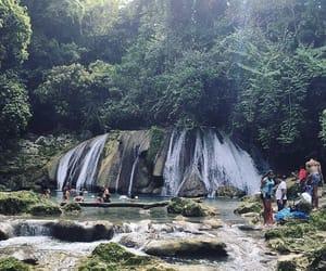 fresh, jamaica, and nature image