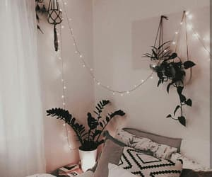 plants, room, and lights image
