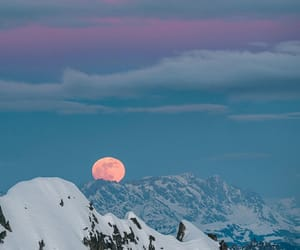 beautiful nature, moon, and wild image