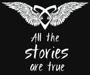 shadowhunters, book, and story image