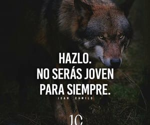 frases and decisiones image