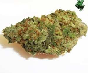 1 ounce blueberry image