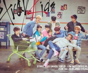 stray kids, Chan, and Minho image