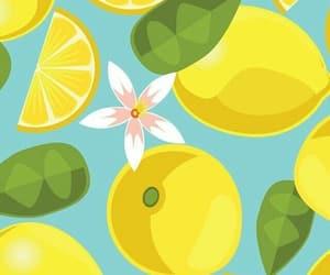 lemon, wallpaper, and fruit image
