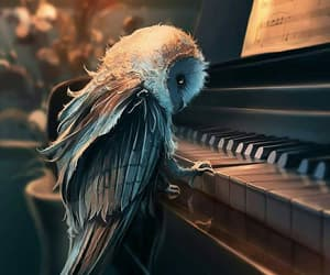 owl, art, and piano image