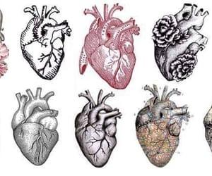 heart, art, and hearts image