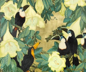 art, summer, and tucan image
