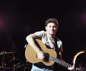 concert, singer, and niall horan image