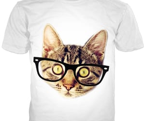 hipster, cute kittens, and fashion image