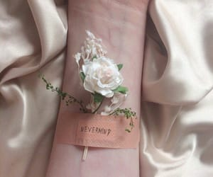 aesthetic, flower, and hand image