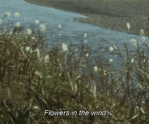 flowers, wind, and gif image