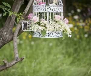 cage, flowers, and spring image