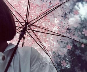 umbrella, flowers, and rain image