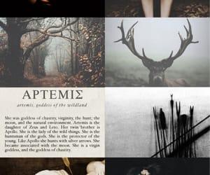 aesthetic, minimalist, and story image