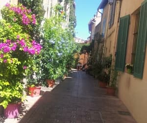 alleyway, provence, and flowers image