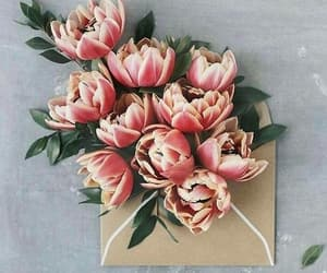 envelope, flowers, and pink image