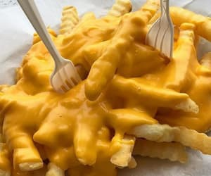 cheese, fries, and yes image