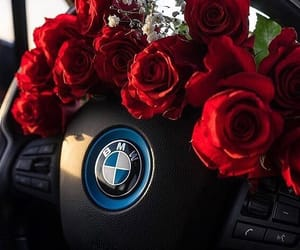bmw, couple, and flowers image