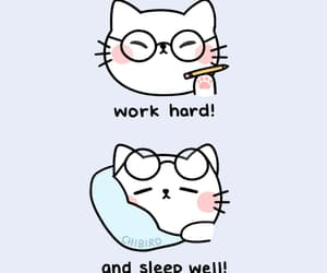 motivation, quotes, and cat image