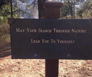 nature, search, and yourself image