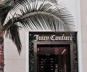 juicy couture, theme, and luxury image
