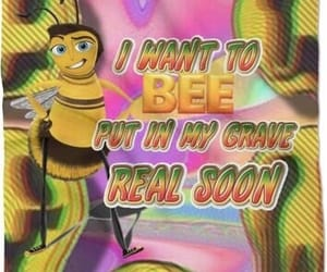 meme, bee, and bee movie image