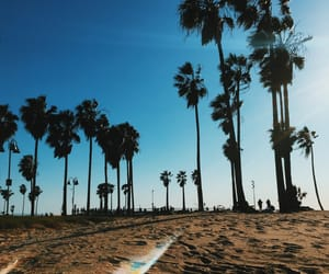 beach, blue, and california image