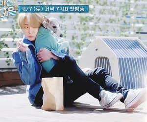 gif, k-pop, and kibum image
