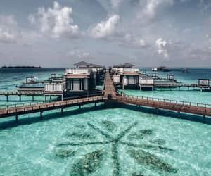 beach, blogger, and Maldives image