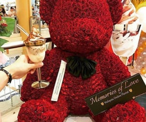 bear, roses, and flowers image