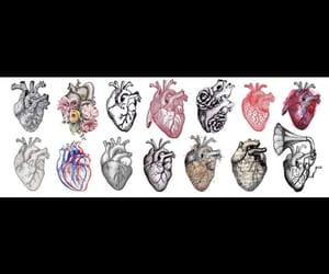 draw and heart image