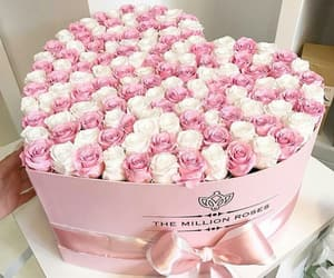 baby pink, beautiful, and beauty image