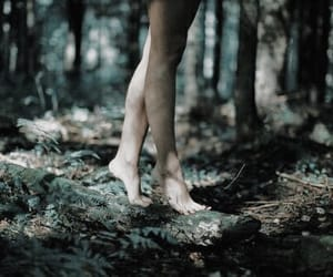 forest, nature, and feet image