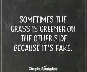 quotes, fake, and grass image