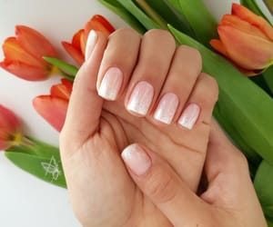 nails, pink, and primavera image