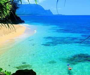 beach, hawaii, and holidays image