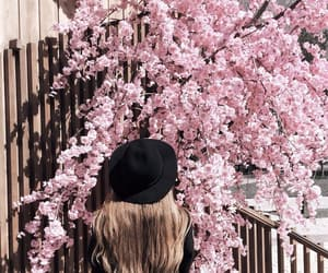 pink, spring, and beautiful image