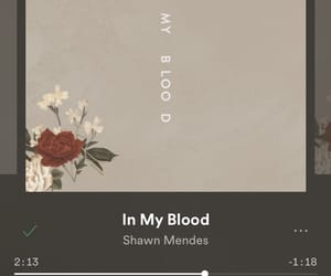 new single, shawn mendes, and in my blood image
