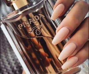 nails, Prada, and perfume image