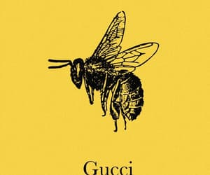 gucci, bee, and yellow image