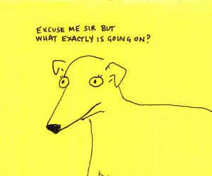 dog and quote image