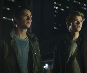 friendship, thomas brodie sangster, and the maze runner image